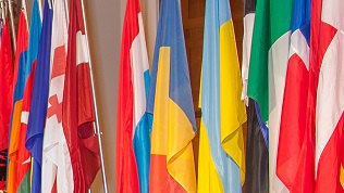 Image: Flags of Various States