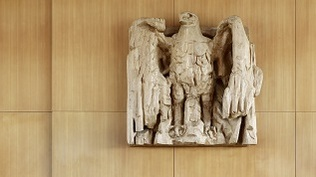 Image: Eagle in the Courtroom